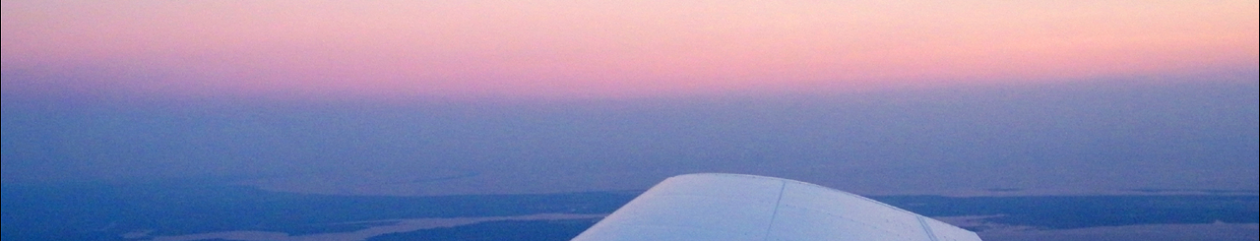 Flight Synergy